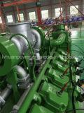 De Reeks van de Generator van de biomassa of Genset voor Biomassa of CHP