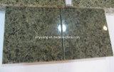 Telhas verdes do granito da mola para o assoalho e a parte superior de pedra da cozinha