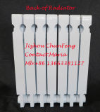 Roheisen-Heizungs-Kühler CS2-560 mit GOST Bescheinigung