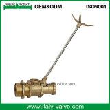 Válvula de flotador de latón de calidad personalizada para la industria (AV5035)
