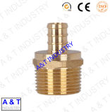 Professional Factory PPR Pipe Fitting Brass, Brass Insert, PPR Brass Fitting