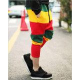 FormHip-Hopart färbt Harem-Hose für Leute