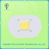 AC COB Dob 10W 20W 30W 40W 50W 60W 70W 80W 90W 150W 120V / 230V / 110V / 220V pour Street Light Downlight