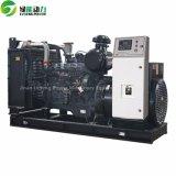 300kVA 중국 Sdec 엔진 디젤 엔진 힘 Syngas 플랜트 발전기