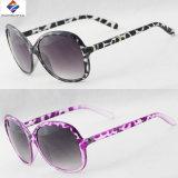 Óculos de sol novos coloridos e superiores da boa qualidade