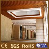 Techo de interior de la resistencia de fuego de madera de la decoración WPC (40X25m m)
