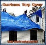 極度のハリケーンの多カバーおよびTarps