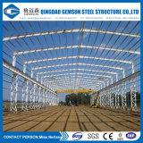 De economische Bouw van de Hanger van de Opslag van het Structurele Staal