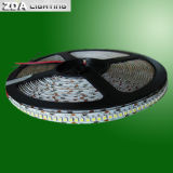 24 볼트 SMD 3528 파랑 LED 지구
