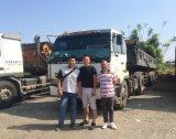 광선 수송아지 강철 트럭 타이어