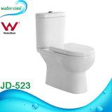 Dubbele Gelijke Tweedelige Vloer - het opgezette Bevindende Toilet van WC van de Badkamers