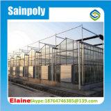 China fabrica de redes de plántulas de efecto invernadero de vidrio