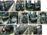 Bombas de água submergíveis elétricas 220V/380V de Qdx1.5-32-0.75f Dayuan, 0.75kw