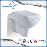 Wall-Hung Dual Flush Ceramic Toilet in White (ACT5807A)