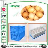 穴が付いている折るプラスチック輸送の卵の木枠