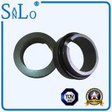 Der Typ BP-Ring (sic-Ring) für die mechanische Dichtung