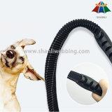 Multi Stretchable 6FT Nylon Funtion van de heet-verkoop/Leiband de het Van uitstekende kwaliteit van de Hond van de Polyester met De Gesp van de Veiligheidsgordel