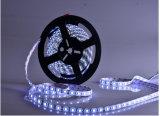 Luz flexible impermeable caliente de la cadena de la tira del blanco/RGB LED de /Cool