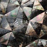 Schwarze Lippenmopp-Shell-Dreieck-Mosaik-Fliese