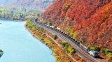 L'accoppiatore della ferrovia 17, accoppiatore del treno, vagone ferroviario parte il fornitore della Cina