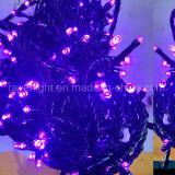 [10م] 200 [لدس] حديقة زخرفة [لد] عيد ميلاد المسيح خيط أضواء