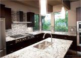 Gabinetes de cozinha para o projeto da cozinha