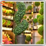 Albero di pino artificiale personalizzato della pianta decorativa (pianta del Boxwood del Topiary)