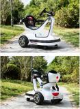 自転車のための12ah 24V Ebike電池Pack18650のEバイク電池のパック李イオン再充電可能なLiFePO4電池