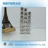 Magnete permanente personalizzato grado di N55 NdFeB con RoHS