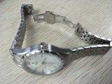 Caja de acero inoxidable del reloj de manera de la señora acero inoxidable 316L y venda semisólida del acero inoxidable