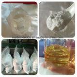 99% Reinheit-Progesteron Chlormadinone Azetat-Puder 302-22-7 für Anti-Estrogenic