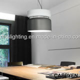 Großhandelsmetalldekoration-hängende Lampe für Innenbeleuchtung