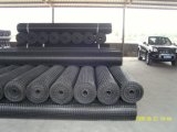 30-30 Kn/M pp Geogrid biassiale