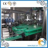 Chaîne de production remplissante carbonatée par série de Dcgf pour la bière
