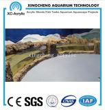 De aangepaste Grote Transparante AcrylPrijs van het Project van de Kruik van Vissen