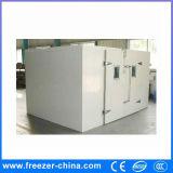 Unidad de Refrigeración fría habitación paneles de PU carne de pescado Congelador Usado