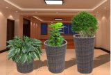 Galvanisierte Blumen-Potenziometer PET Rattan-Blumen-Zahnstangen-Rattan-Möbel