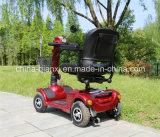 Automobile elettrica approvata del Ce per gli handicappati