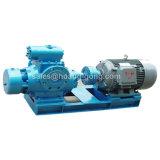 2W. Pompe à huile rotative à deux vis à double pression