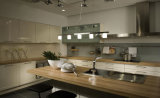Bester Richtungs-heißer Verkaufs-elektronische Schuppen-Küche