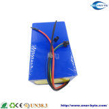 Paquete 24V 30ah de la batería LiFePO4 para la E-Bici de E-Scooter/