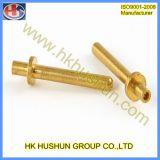 Peça de giro de cobre do CNC da elevada precisão (HS-TP-013)