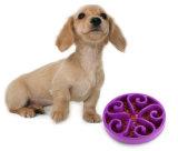 Envase del pienso del tazón de fuente lento del alimentador del animal doméstico del tazón de fuente del agua del alimento pequeño