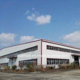 Taller de acero del almacén de la mayor nivel para el edificio de acero