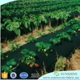 Rullo non tessuto del tessuto di controllo di Weed di agricoltura