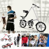 Fabricante profissional da bicicleta adulta e da bicicleta dos miúdos