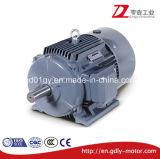 Три фазы Beide индукционный электродвигатель, чугунные, IP55, IC411