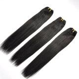 10A estensioni indiane nere naturali dei capelli umani di colore 100%