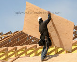 Mayor tamaño 1525mmx3150mmm o 6'x10' Película de la construcción de madera contrachapada frente