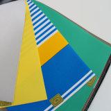 Revestimento de poliéster plástica de poliéster plástico em tecido
